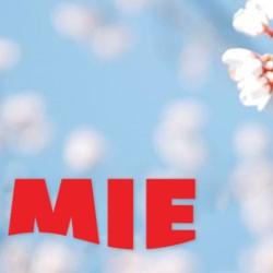 Стартовал конкурс на лучший весенний аватар для сообществ в соцсетях MIE