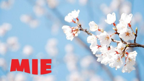 "Голосуем за ""Весенний аватар MIE""!"