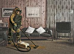 Что такое домашняя пыль